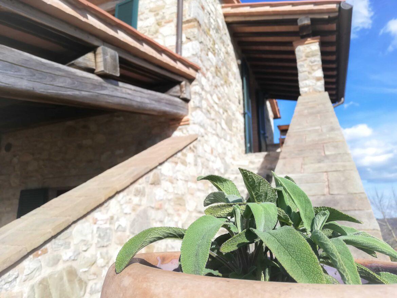 Appartement 'Salvia' (Incl. Ontbijt)